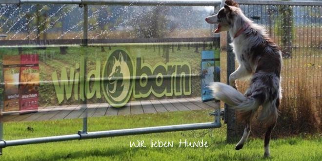 wildborn hundefutter gutscheincode